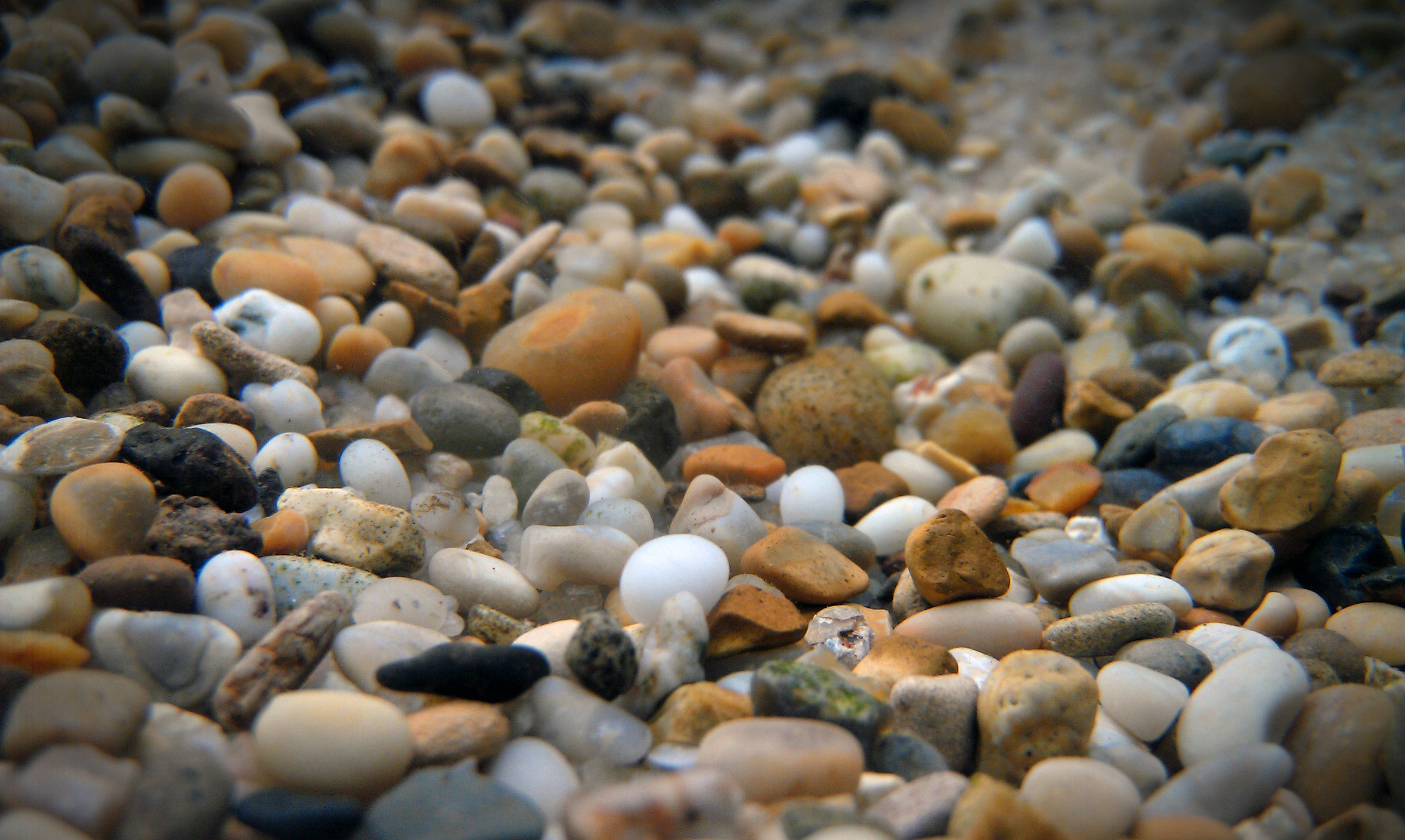 Sand Versus Gravel In Your Aquarium