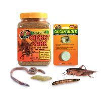 Reptile Live Insects