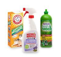 Cat Stain and Odor Control